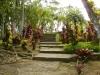 jardin-de-batala-13